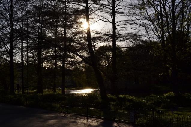 regentpark (1)